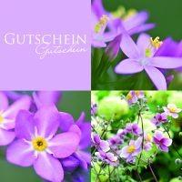 Gutschein Lila Flower
